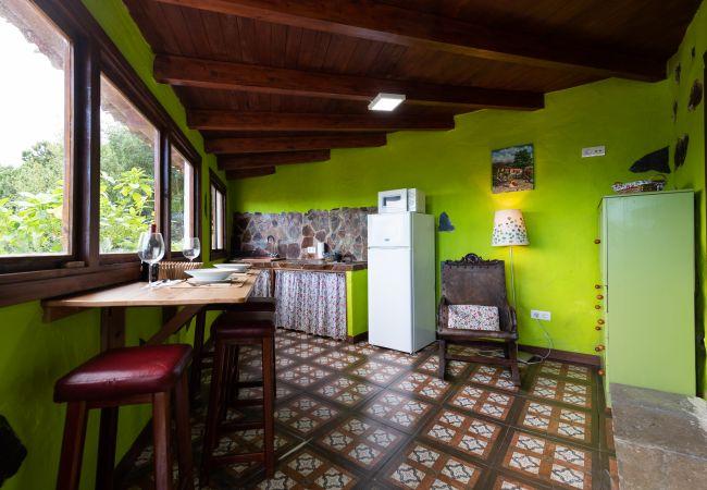 Country house in Icod de los Vinos - CASA EL PATIO - Finca EL MOLLEDO