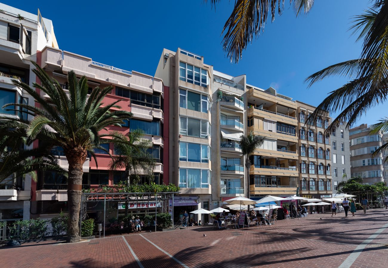 House in Las Palmas de Gran Canaria - Awesome 3 bedrooms front line with terrace by CanariasGetaway